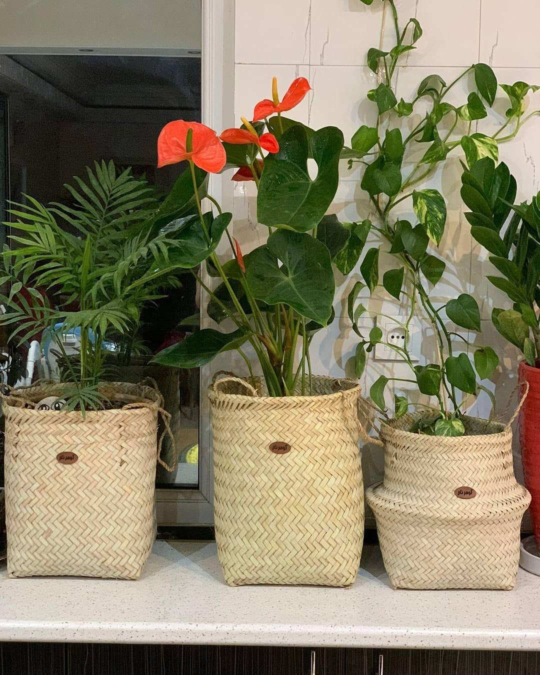 کاور-گلدان-حصیربافی